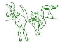 Old Man Kangaroo being chased by Wild Dog Dingo